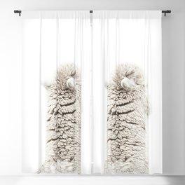 Alpaca Back Blackout Curtain