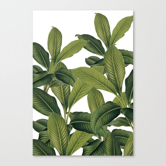 Love these leaves Canvas Print