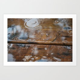 Rainy Day - Mt Glorious, SE Queensland Art Print
