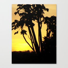 Swazi Sunset Canvas Print