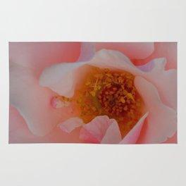 Rose Garden Two Rug