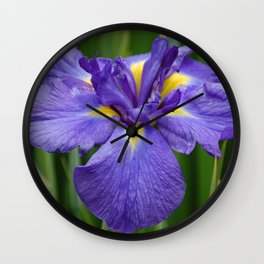 Purple Iris Flower Wall Clock