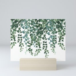 Ivy Vine Drop Mini Art Print
