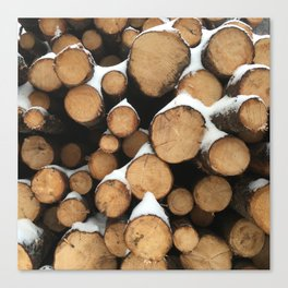 Firewood of the Future Canvas Print