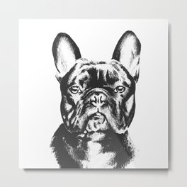 Black And White French Bulldog Sketch Metal Print