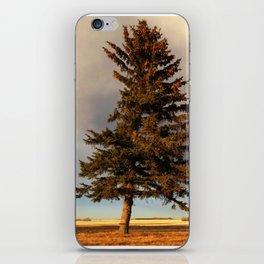 Alone at Dusk iPhone Skin