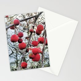Crabapples in Winter Stationery Cards
