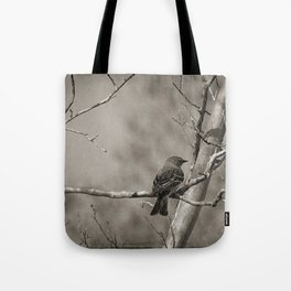 The Quest:  Black and White Bird Antiqued Tote Bag
