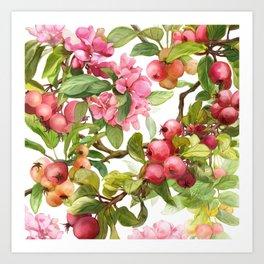 Watercolor apple Art Print