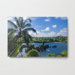 Black Sand Beach, Hawaii Metal Print