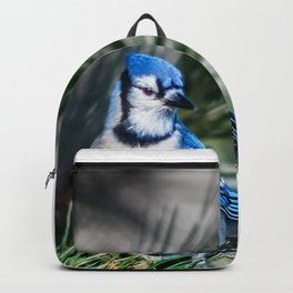 Bright BlueJay Backpack