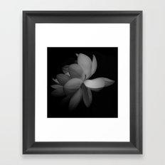 Black & While Lotus Framed Art Print