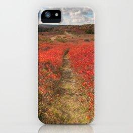 Autumn Huckleberry Trail iPhone Case
