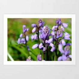 Spring purple Art Print