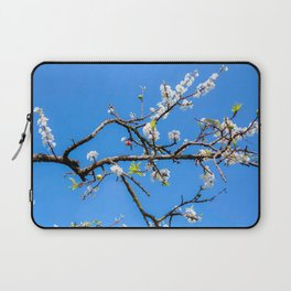 Plum flower, Photo Plum flower, Plum flower hill, beautiful view Laptop Sleeve