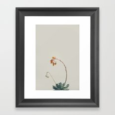 Yellow and pink Framed Art Print