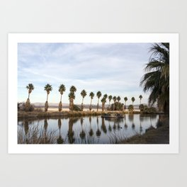 California Lake Lined Palm Tree Photograph Art Print