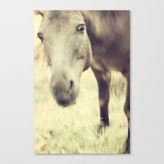 Munching Out Canvas Print
