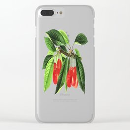 Red Cherries Vector on White Background Clear iPhone Case