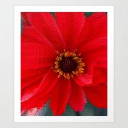 Scarlet Red Art Print
