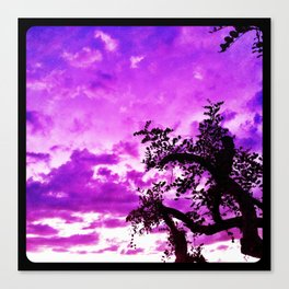 A dash of purple in the sky. Canvas Print