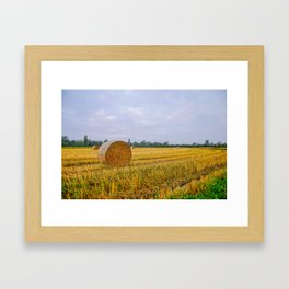 Hay bales in the Lomellina countryside during autumn Framed Art Print