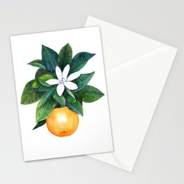 Citrus Flower Stationery Cards