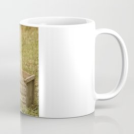 apple crate photograph Coffee Mug