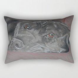 Shy Guy Cole Rectangular Pillow