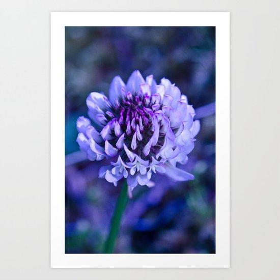 Flower Pop  Art Print