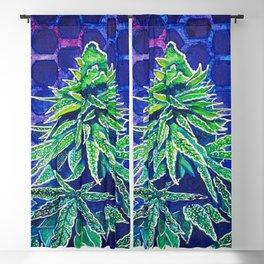 Purple Kush Blackout Curtain