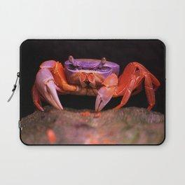 Colorful crab | Harlekinkrabbe Laptop Sleeve