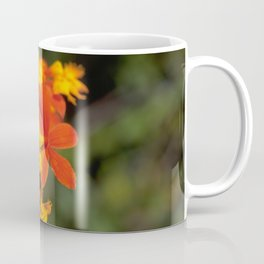 Crucifix Orchid - Epidendrum radicans Coffee Mug
