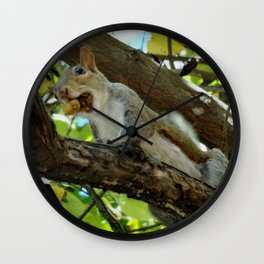 Mouthful squirrel Wall Clock