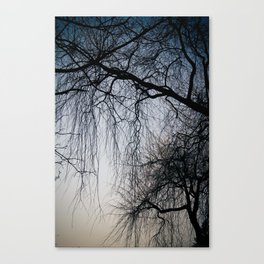 Tree Fingers Canvas Print