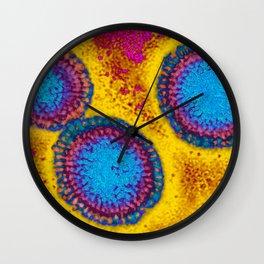 Influenza virus Wall Clock