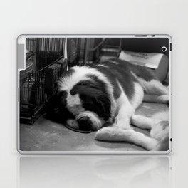 Sleeping Saint Bernards Laptop & iPad Skin