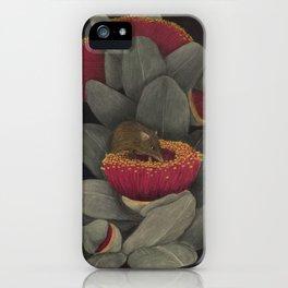 Honey Possum iPhone Case