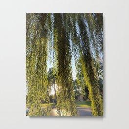 Tree Lover Metal Print