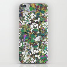 Hawthorn Digital Distortion iPhone & iPod Skin