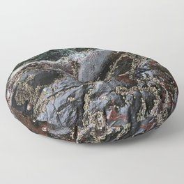 Ocean Weathered Natural Rock Texture with Barnacles Floor Pillow