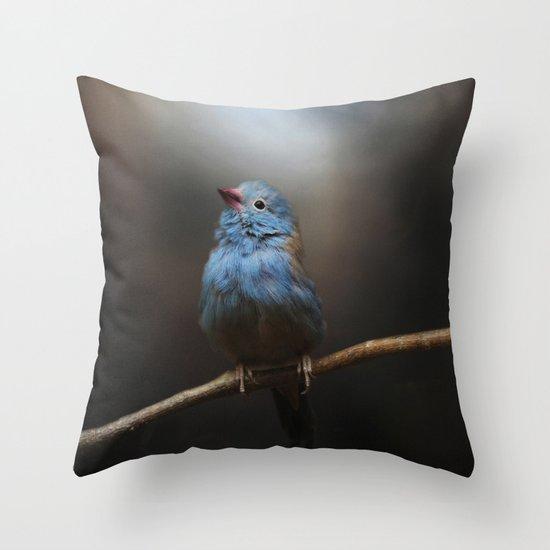 Believe! Throw Pillow