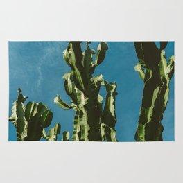 Cactus Sky II Rug