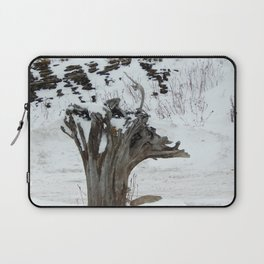Stumpy and the Rock Wall in Winter White Laptop Sleeve