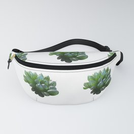 Juicy Fanny Pack