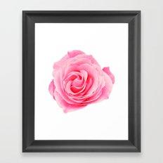 Swirly Petals Pink Rose Framed Art Print