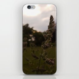 Sunset over the Wild Grass iPhone Skin