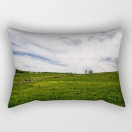 On Fields of Yellow and Green Rectangular Pillow