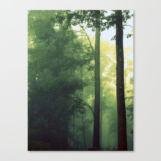 Is This The Place From My Dreams? Canvas Print