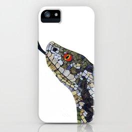 Adder iPhone Case